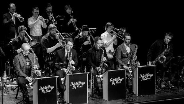 Bild på Ekdahl/Bagge Big Band möter Georg Riedel